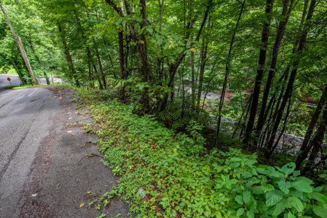 0011 Ski Moutain Rd, Gatlinburg, TN 37738 (#1055190) :: Billy Houston Group