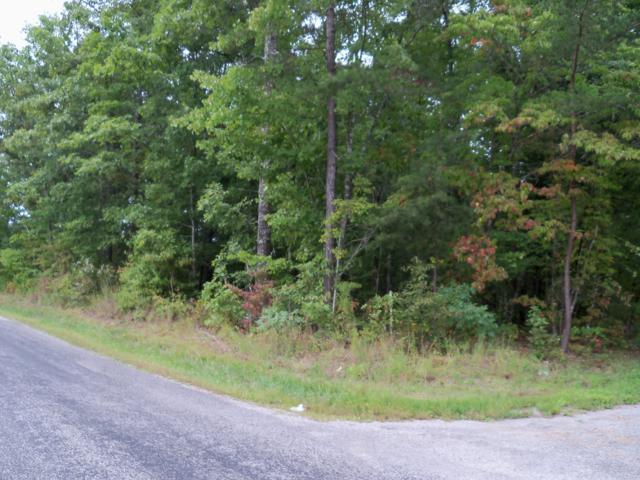 Ett Brown Rd, Deer Lodge, TN 37726 (#1055219) :: Billy Houston Group