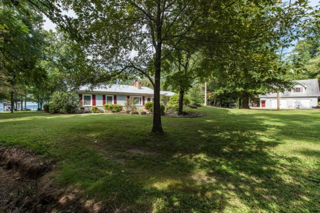 226 Eagle Point Drive, Rockwood, TN 37854 (#1055279) :: Billy Houston Group