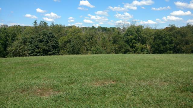 Ridge Lane, Sevierville, TN 37876 (#1055282) :: Billy Houston Group