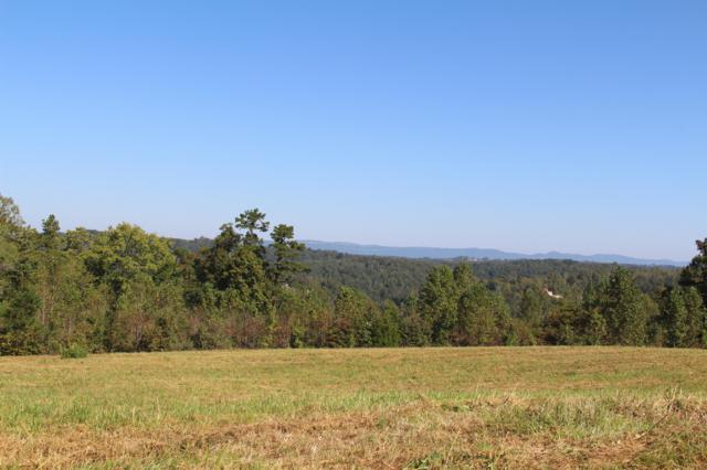 627 Prestige Ridge, LaFollette, TN 37766 (#1055290) :: Billy Houston Group