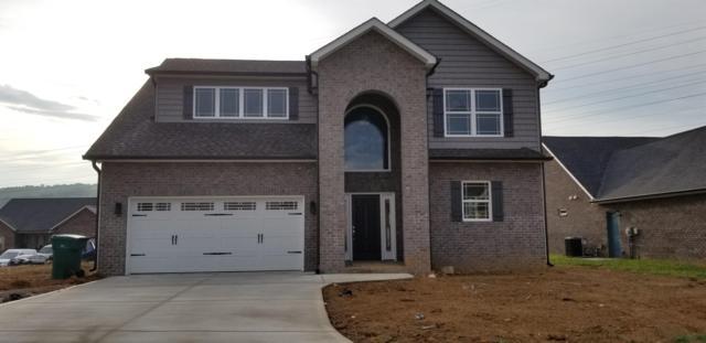 6324 Greystoke Lane, Knoxville, TN 37912 (#1055320) :: Billy Houston Group