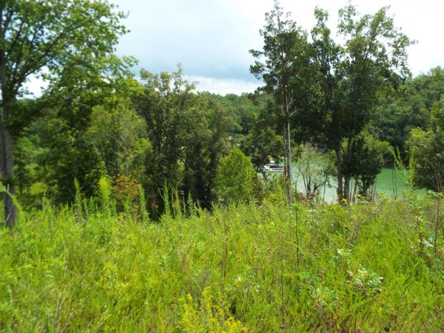 Lot 4 Stone Cove Way, Dandridge, TN 37725 (#1055339) :: The Creel Group | Keller Williams Realty