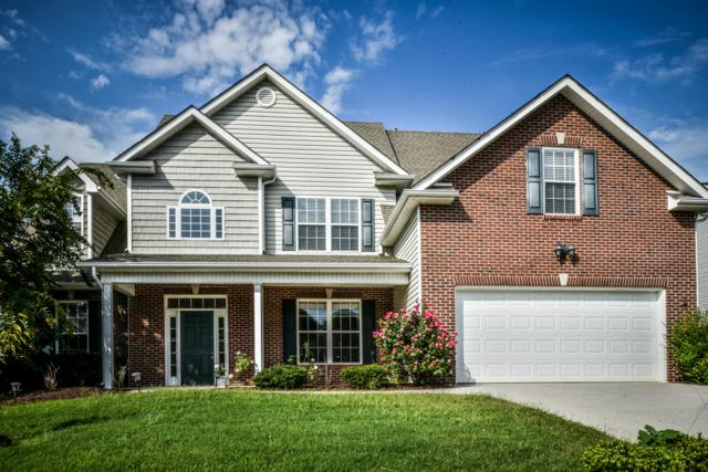 3723 Boyd Walters Lane, Knoxville, TN 37931 (#1055428) :: Billy Houston Group