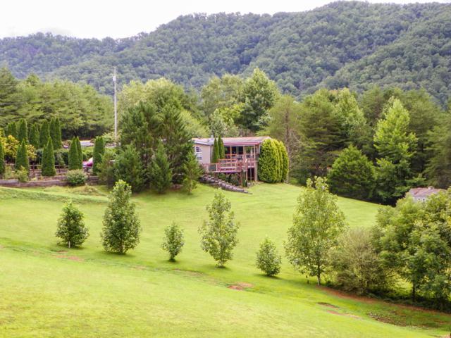 4739 Pryor Lane, Cosby, TN 37722 (#1055474) :: SMOKY's Real Estate LLC