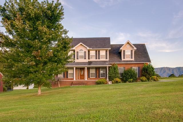 1531 Brahman Lane, Seymour, TN 37865 (#1055487) :: Billy Houston Group