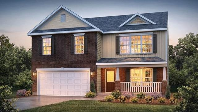 1251 Bill Wallace Drive, Friendsville, TN 37737 (#1055538) :: Shannon Foster Boline Group