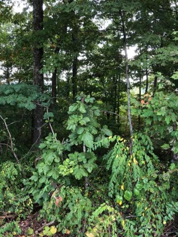 Deer Trail Lane, Rocky Top, TN 37769 (#1055565) :: Billy Houston Group