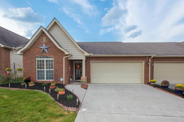 6149 Mcmillan Creek Drive, Knoxville, TN 37924 (#1055593) :: Billy Houston Group