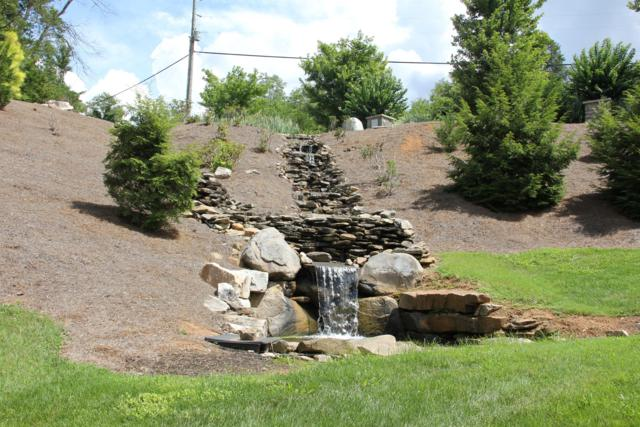 Lot 79 Stone Bridge Drive, Dandridge, TN 37725 (#1055631) :: Shannon Foster Boline Group