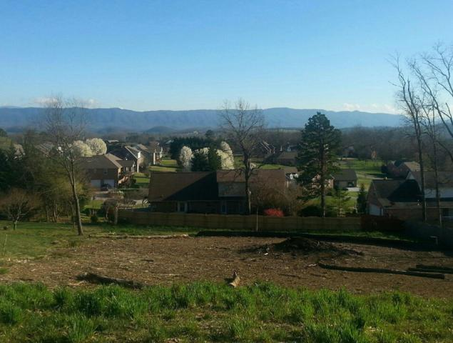 Big Bend Drive, Maryville, TN 37803 (#1055719) :: Billy Houston Group