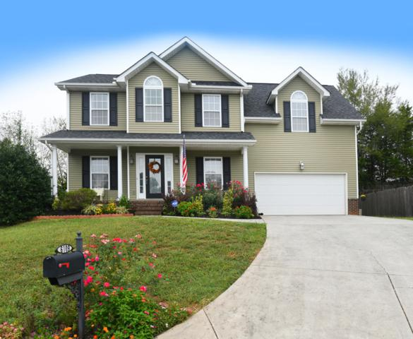 6109 Evening Star Lane, Knoxville, TN 37918 (#1055722) :: Billy Houston Group