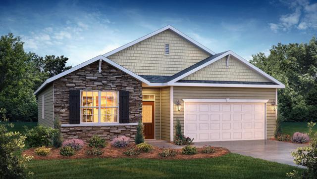1249 Bill Wallace Drive, Friendsville, TN 37737 (#1055735) :: Shannon Foster Boline Group