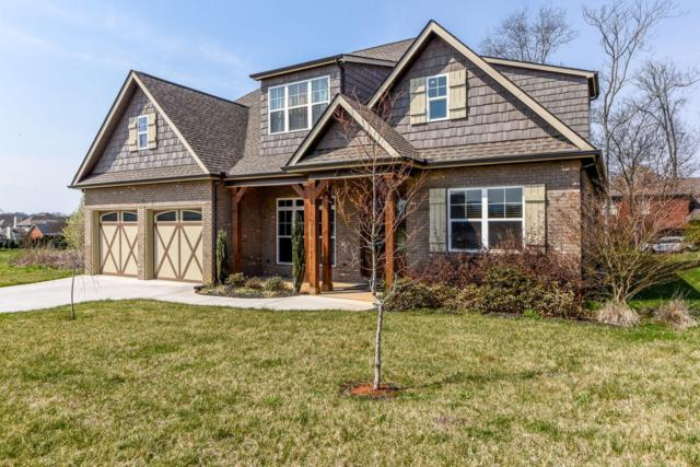 519 Karch Drive, Maryville, TN 37803 (#1055749) :: Billy Houston Group