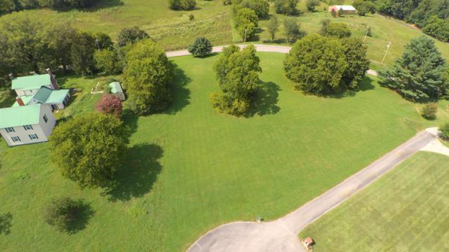 133 A T Crumley Rd, Rockford, TN 37853 (#1055754) :: Billy Houston Group
