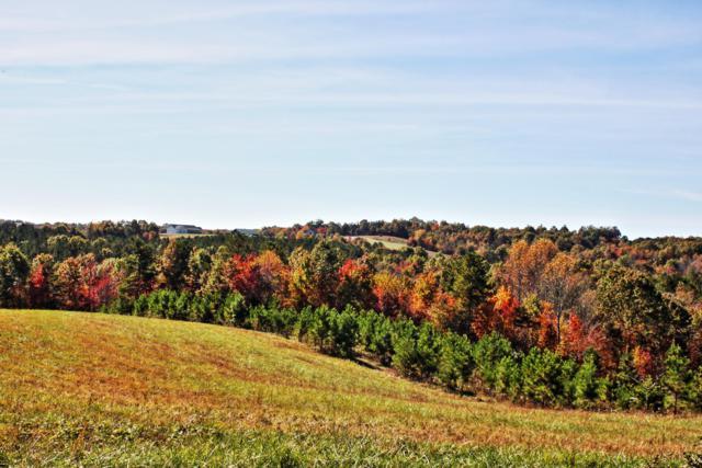 Lot 6 Nichol Creek Drive, Jamestown, TN 38556 (#1055787) :: Billy Houston Group