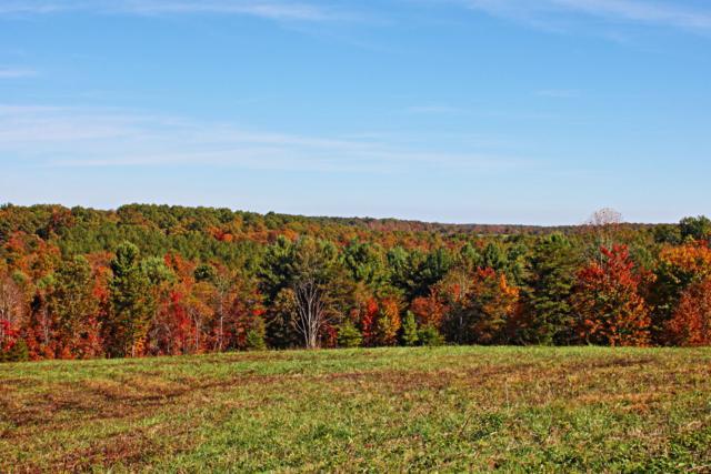Lot 59 Vista View Pkwy, Jamestown, TN 38556 (#1055789) :: Billy Houston Group