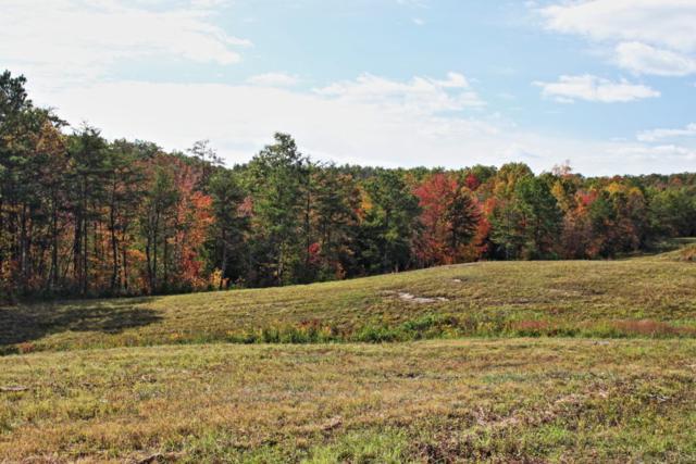 Lot 68 Vista View Pkwy, Jamestown, TN 38556 (#1055791) :: Billy Houston Group