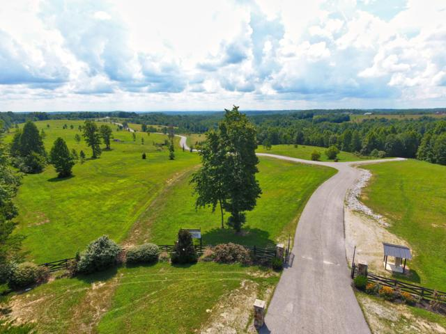 Lot 24&26 Nichol Creek Drive, Jamestown, TN 38556 (#1055795) :: Billy Houston Group