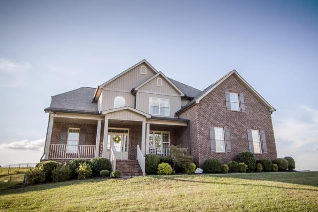 1521 Mountain Hill Lane, Knoxville, TN 37931 (#1055802) :: Billy Houston Group