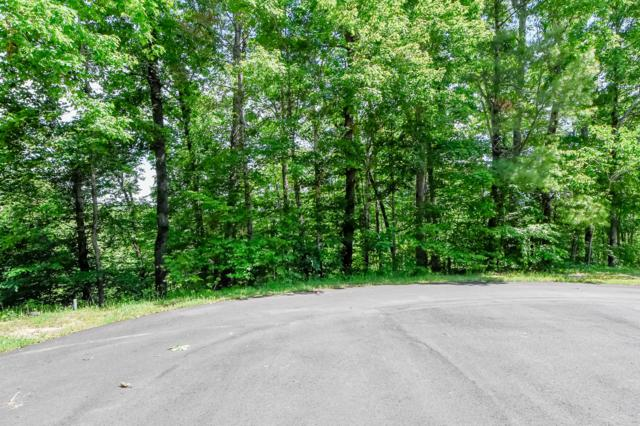 Cold Springs Trace, Townsend, TN 37882 (#1055868) :: Billy Houston Group