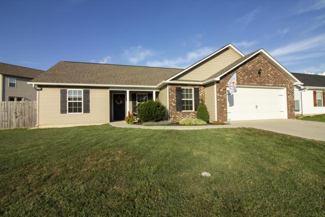 7816 Edwards Place Blvd, Corryton, TN 37721 (#1055923) :: Shannon Foster Boline Group