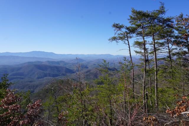Mountain Ash Way, Sevierville, TN 37876 (#1055931) :: Billy Houston Group