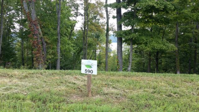 Lot 590 South Two Rivers, LaFollette, TN 37766 (#1055985) :: Billy Houston Group