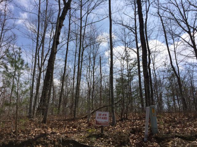 Eagle Bluff Lane, Jamestown, TN 38556 (#1055992) :: Billy Houston Group