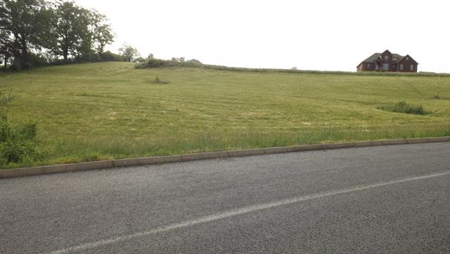 Robbins Lane, harrogate, TN 37752 (#1056052) :: Billy Houston Group