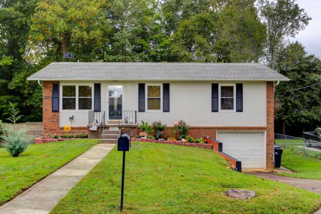 6809 Ellesmere Drive, Knoxville, TN 37921 (#1056081) :: Billy Houston Group