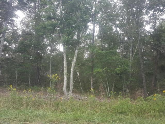 3226 Oswego Rd, Crossville, TN 38572 (#1056177) :: Billy Houston Group