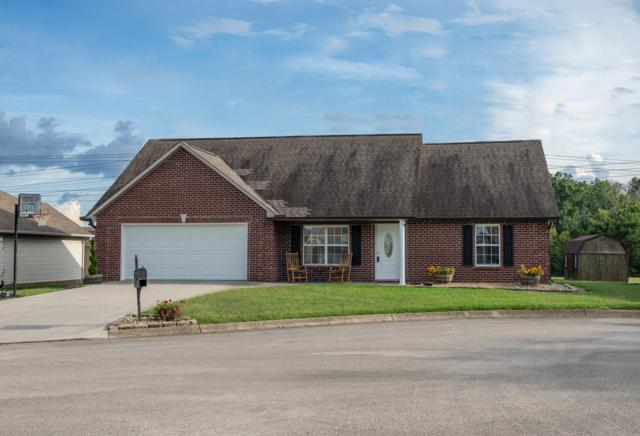 8404 Reality Lane, Corryton, TN 37721 (#1056215) :: Shannon Foster Boline Group