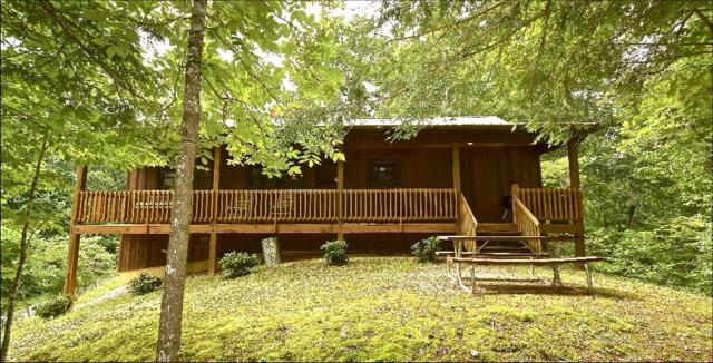 508 Nathans Nook Rd, Townsend, TN 37882 (#1056222) :: Billy Houston Group