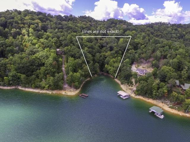 Lakeview Drive, Sharps Chapel, TN 37866 (#1056254) :: Shannon Foster Boline Group