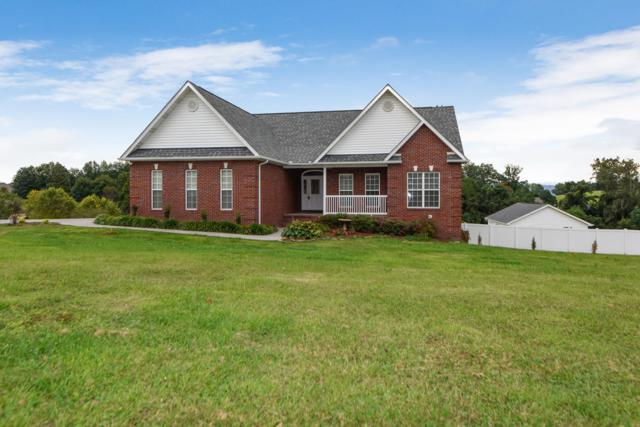 3231 Reiley Drive, Maryville, TN 37801 (#1056287) :: Billy Houston Group
