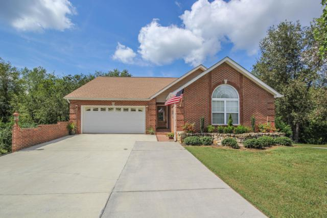 2031 Cherokee Drive, Maryville, TN 37801 (#1056306) :: Billy Houston Group
