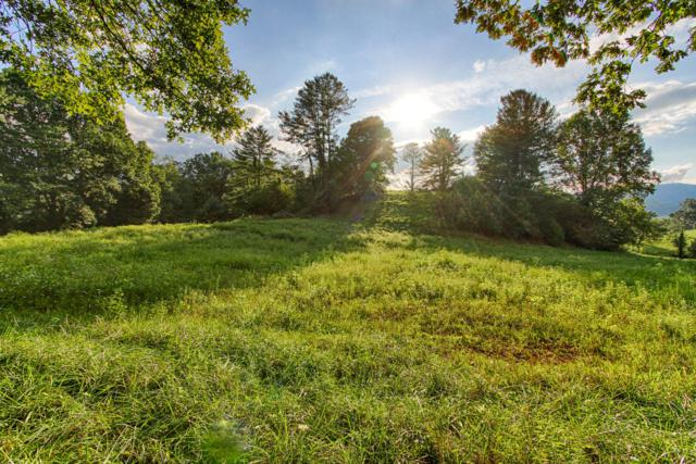 Lot 11 Golf Course Drive, Mountain City, TN 37683 (#1056319) :: Billy Houston Group