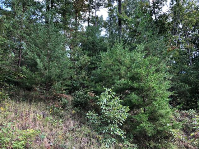 Lot 69 Waterfront Trails, LaFollette, TN 37766 (#1056371) :: Billy Houston Group