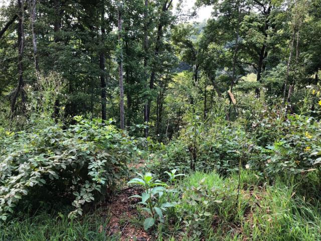 Lot 67 Waterfront Tr, LaFollette, TN 37766 (#1056374) :: Billy Houston Group