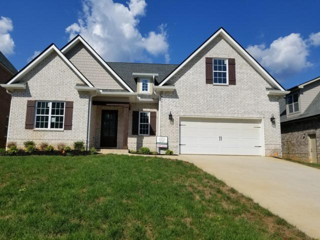 1308 Feather Rose Lane, Knoxville, TN 37923 (#1056404) :: Billy Houston Group