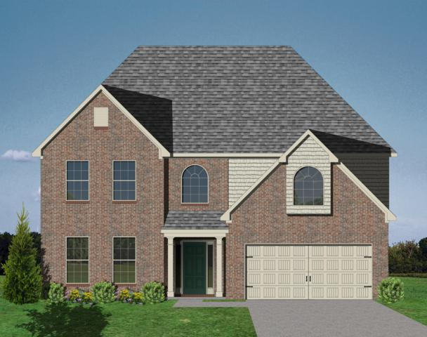 10738 Bald Cypress, Knoxville, TN 37922 (#1056467) :: Billy Houston Group