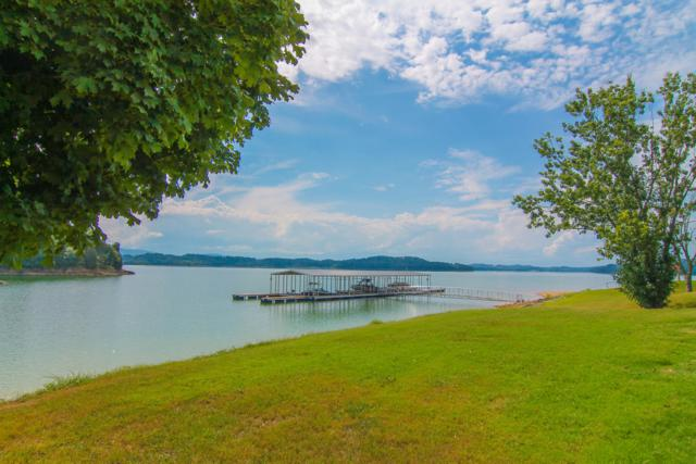 713 Waters Edge, Dandridge, TN 37725 (#1056499) :: Billy Houston Group