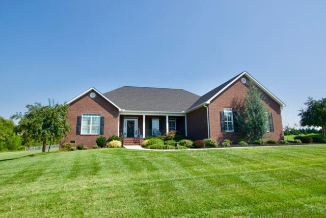 1430 Aberdeen Drive, Alcoa, TN 37701 (#1056503) :: Billy Houston Group