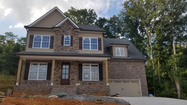 8520 Flowering Peach Lane, Knoxville, TN 37923 (#1056556) :: Billy Houston Group