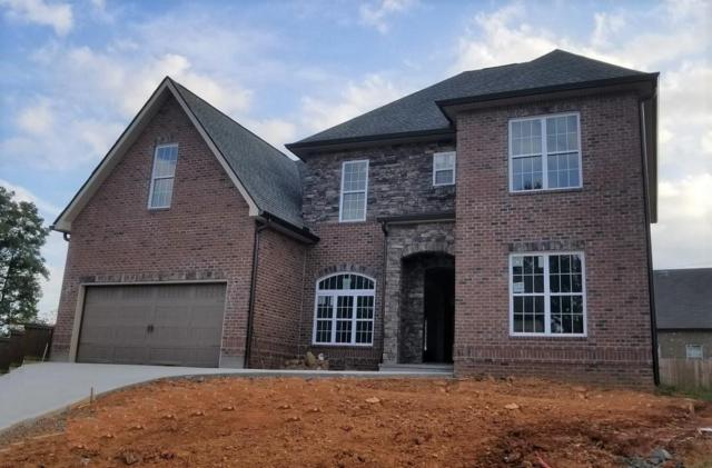 1304 Feather Rose Lane, Knoxville, TN 37923 (#1056559) :: Billy Houston Group