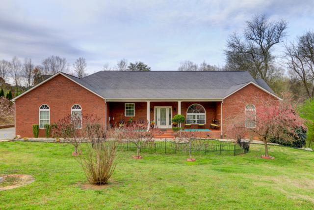 1402 Alum Cave Cove, Sevierville, TN 37862 (#1056596) :: Billy Houston Group