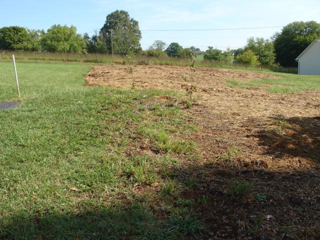 Lori Ellen Court, Sevierville, TN 37876 (#1056652) :: Billy Houston Group