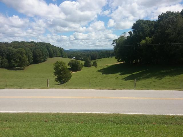3045 Willow Grove Hwy, Allons, TN 38541 (#1056669) :: Billy Houston Group