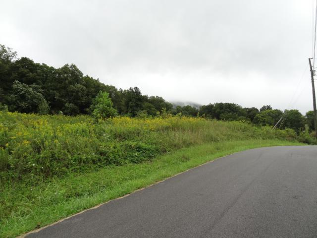 Lot 29 Sugar Tree Drive Drive, Sevierville, TN 37876 (#1056687) :: Billy Houston Group